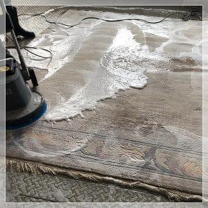Teppich Waschen Majid Yousefi